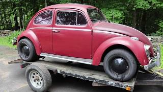 The Volkswagen Beetle that almost got me evicted . But Honey I got a great deal on this Vw Bug !
