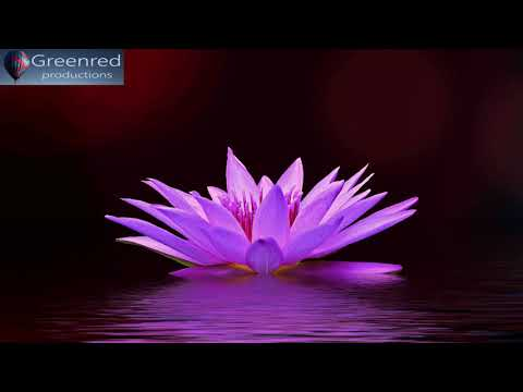 528 Hz Music: DNA Repair Music with 528Hz Solfeggio Frequency, Healing Music, Relaxing Music