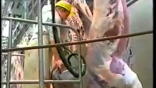 Repeat youtube video Beef meat cutting in Saudi Arabia