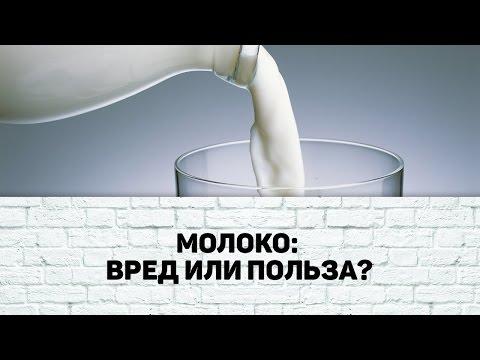 Козье молоко: польза и вред. Польза козьего молока для