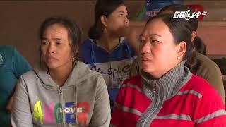 VTC14 | Phú Yên: chậm thống kê thiệt hại sau bão, ngư dân nuôi tôm hùm điêu đứng