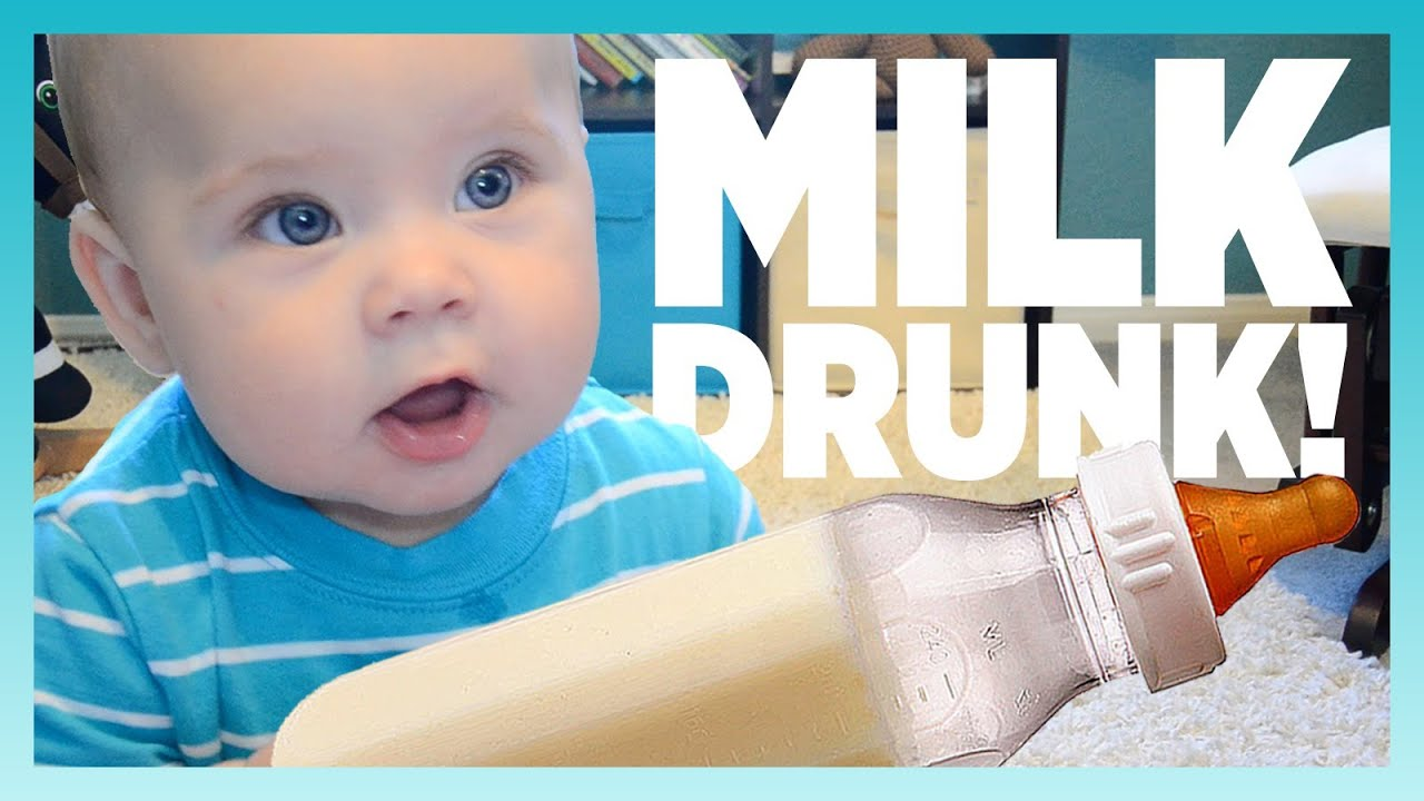 Download MILK DRUNK!   Look Who's Vlogging: Daily Bumps (Episode 2)