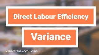 Direct labour efficiency variance 直接勞動效率差異 Standard Cost 標準成本 Management Accounting Example