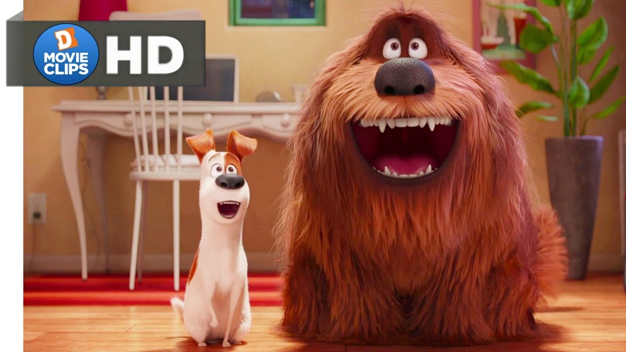 Download The Secret Life Of Pets Hindi (14/14) The Owners Return Scene MovieClips