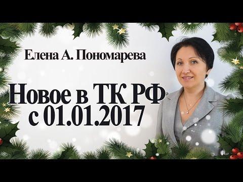 Видео Организация деятельности правительства российской федерации.
