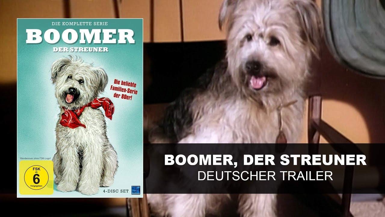 Boomer Der Streuner
