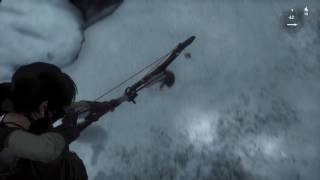 Rise of tomb raider - fuck you squirrel