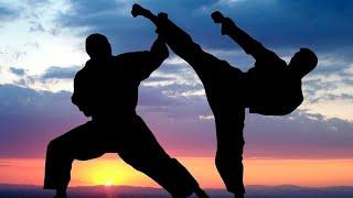 Как правильно тренироваться единоборствами дома Пошаговая тренировка каратэ
