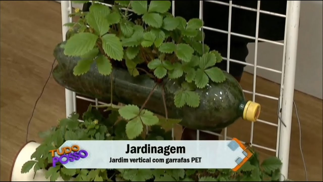 Jardim vertical com garrafas PETs  YouTube