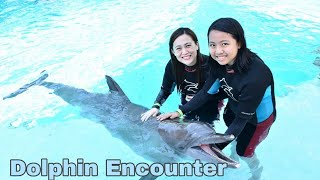 Dolphin Encounter at Adventure Cove Water Park Sentosa Singapore Day 3 Part 1|Just Jasmine