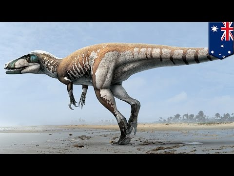 Jurassic Park: World's largest ever dinosaur footprint found in western Australia - TomoNews