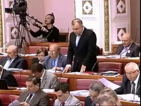 Nedžad Hodžić - zastupničk...