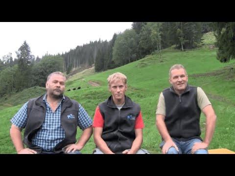 Suisse Tier Innovationswettbewerb: Zentralschweizer Lamm
