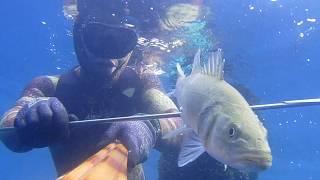 Pesca sub 29/04/2018 pescata sfortunata