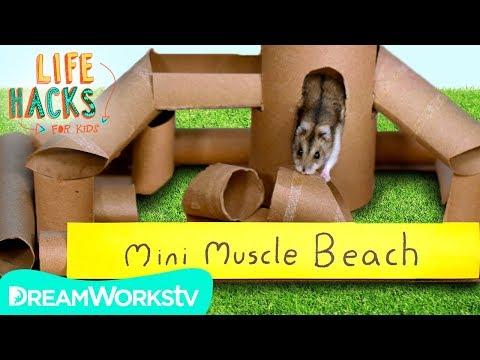 hamster-jungle-gym-+-other-small-pet-hacks- -life-hacks-for-kids