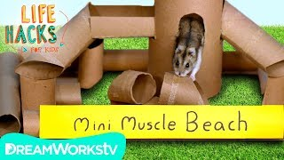 Hamster Jungle Gym + Other Small Pet Hacks | LIFE HACKS FOR KIDS