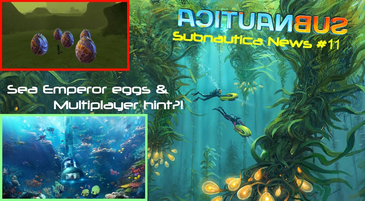 Multiplayer Hint Dirty SEAMOTH Amp Future Of Subnautica