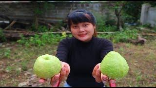Cooking skills | guava fried dough - primitive life | survival skills. HT