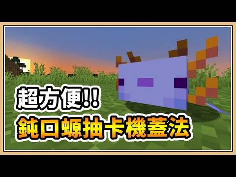 【Minecraft】零失誤!超方便的藍色蠑螈抽卡機🎯【鬼鬼】熱帶魚桶不再噴掉了