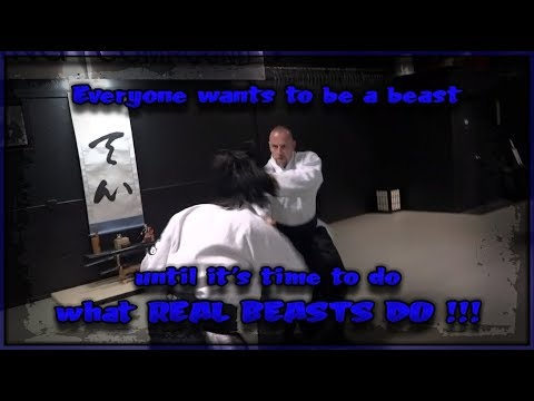 AIKIDO - The Way of the ROGUE WARRIOR, if it HURTS it WORKS! - Series Premier
