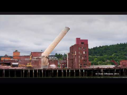 Requiem For A Pulp Mill