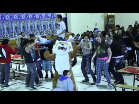 Todd County Middle School   Harlem Shake 8th Grade