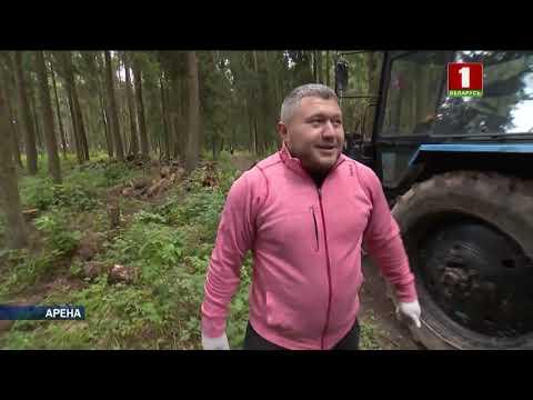 Как Андрей Арямнов брёвна грузил | Weightlifting Belarus