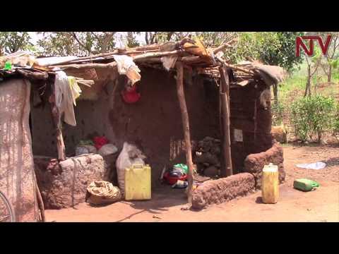 Internally displaced people in Kiryandongo want land titles
