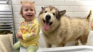 My Giant Sulking Dog Hates Bath Time But Baby Helps! (CUTEST EVER!!)