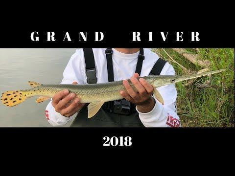 Grand River - Fishing For Gar