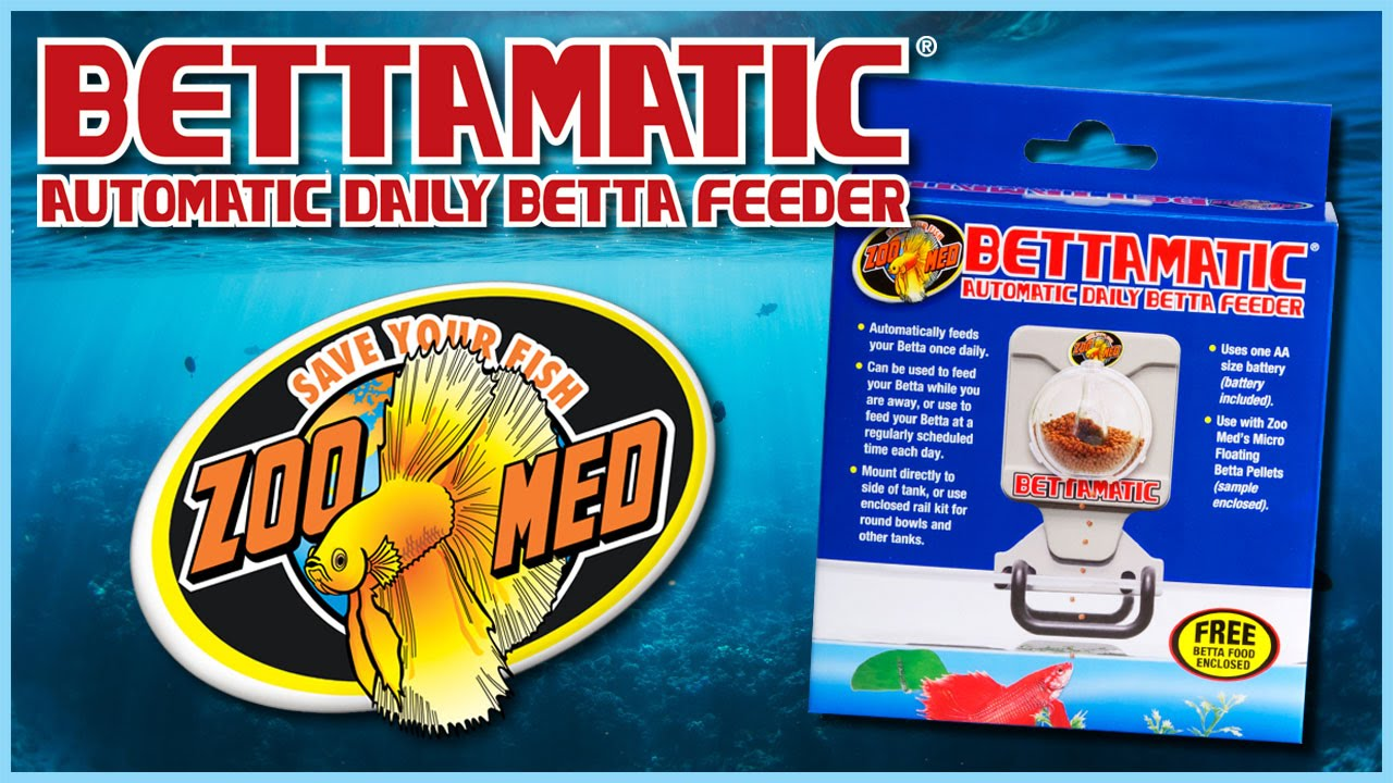 Zoo med bettamatic youtube for Weekend fish feeder