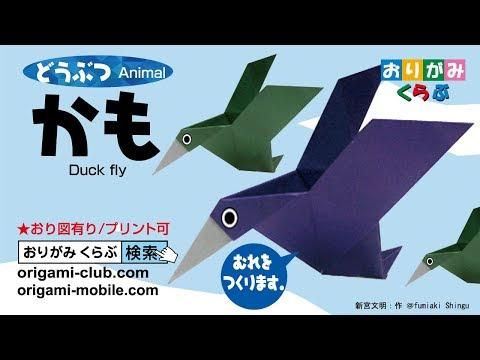折り紙 Origami・とぶかも Duck Fly