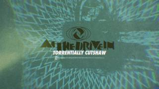 At The Drive In - Torrentially Cutshaw