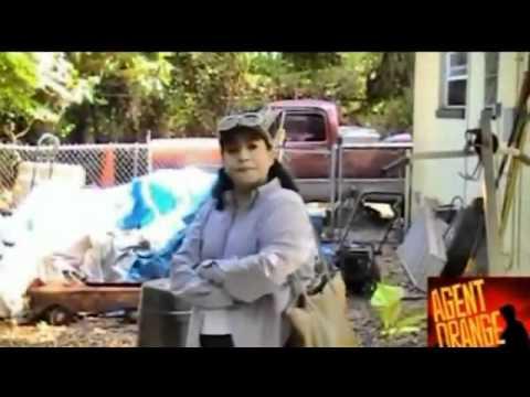 ~Agent Orange Barrels Seen Buried at Gainesville Koppers Superfund Site~