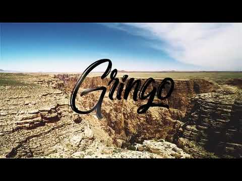 Shatta Wale - Gringo (Official Video ).