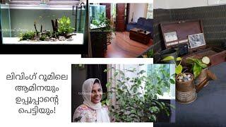 Living room tour/Planted aquarium/indoor plants for low light living room makeover/ Botanical Woman