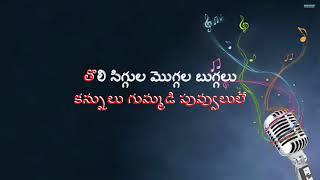 Annula Minnal Ammadi Telugu Karaoke Song with Telugu Lyrics II CHANTI