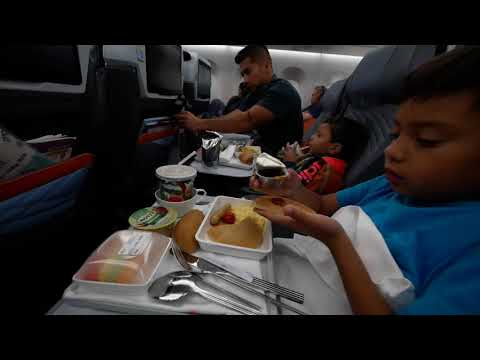 LAX To SIN April 2019 - Long Haul Flight On Singapore Airlines