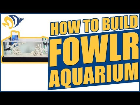 How to build a FOWLR Aquarium (fish only with live rock)
