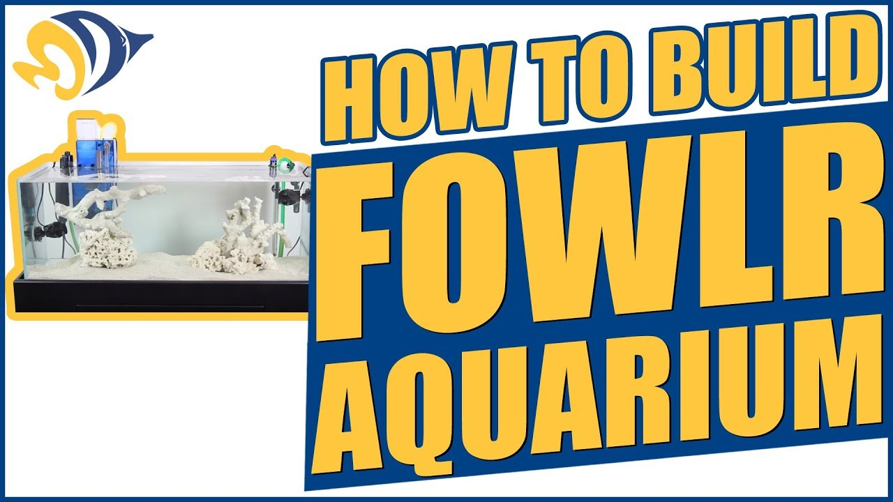 How to build a FOWLR Aquarium (fish only with live rock) Thumbnail