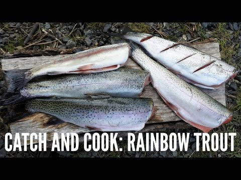 Catch and Cook: Rainbow Trout on the Grill! (episode #1)
