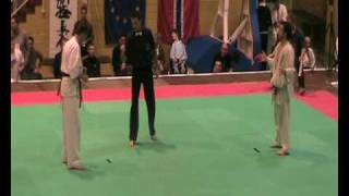 karate kyokushin diamond cup 2009