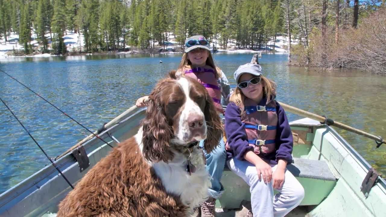 Mammoth Lakes Fishing Trip Youtube