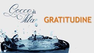 Gocce di Vita  - Gratitudine (Gratidão - legendado)