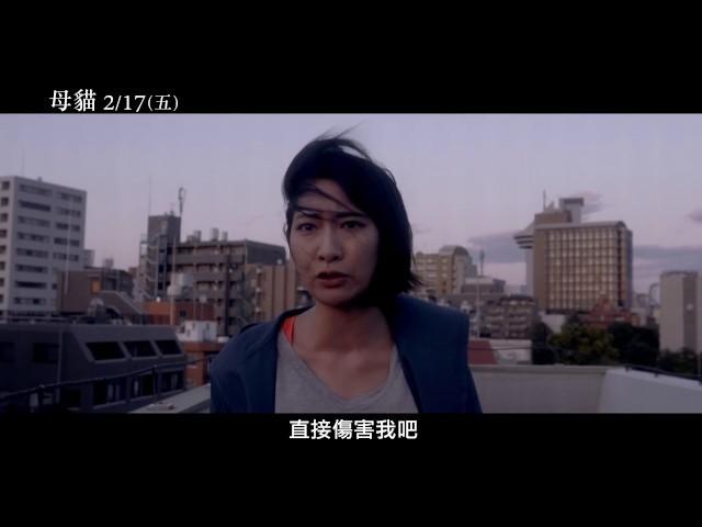 【母貓】Dawn of the Felines 電影預告 2/17(五) 為愛而生