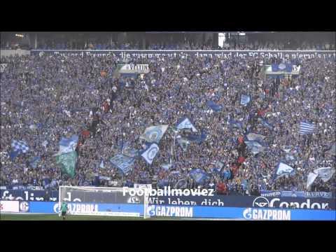 FC Schalke 04 - TSG 1899 Hoffenheim 4:0 (08.03.2014)