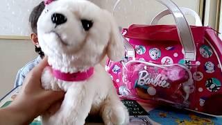 Собачка Barbie,Телескоп и пончик,Укол для Собаки?Видео для детей
