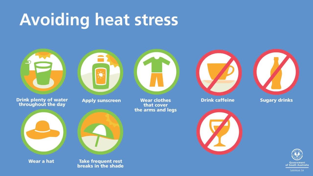 Heat & UV exposure | SafeWork SA