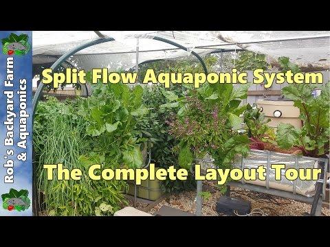 Split Flow Aquaponic System, The Complete Layout Tour.