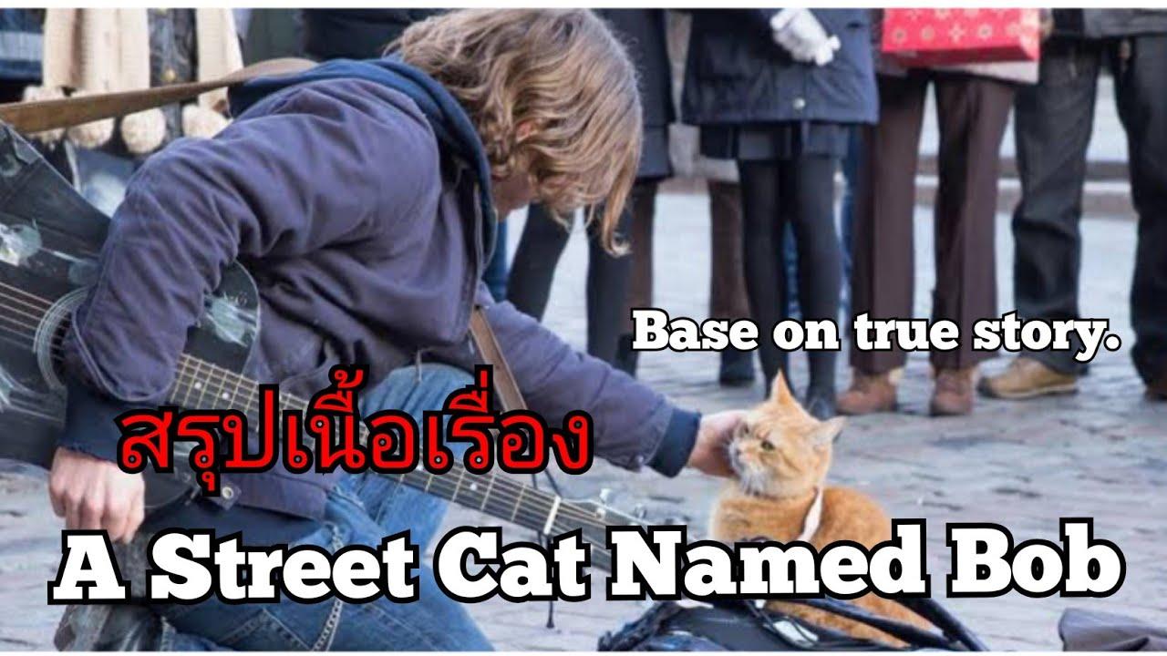 สปอยหนัง A Street Cat Named Bob (2016) บ๊อบ แมวเพื่อนคน